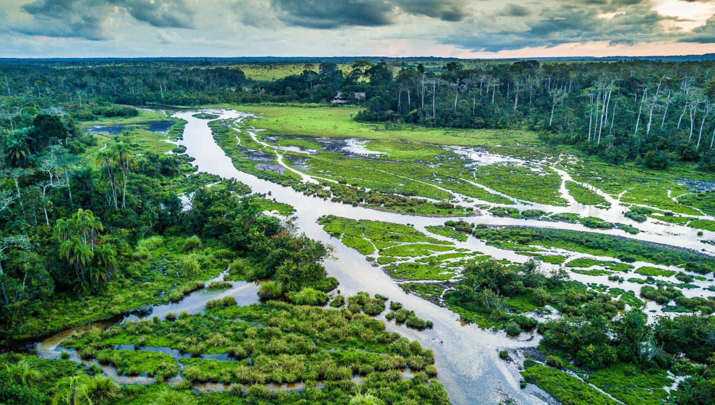 Odzala-Kokoua National Park in the Congo, one of Africa's oldest national parks.